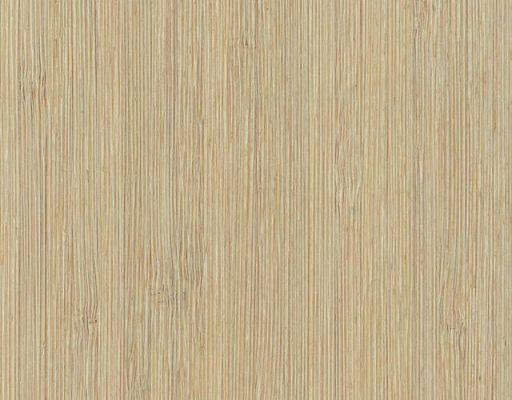 Bambus Bueno