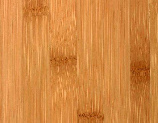 Bambus Noble