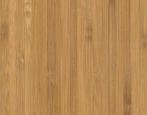 Bambus Precioso